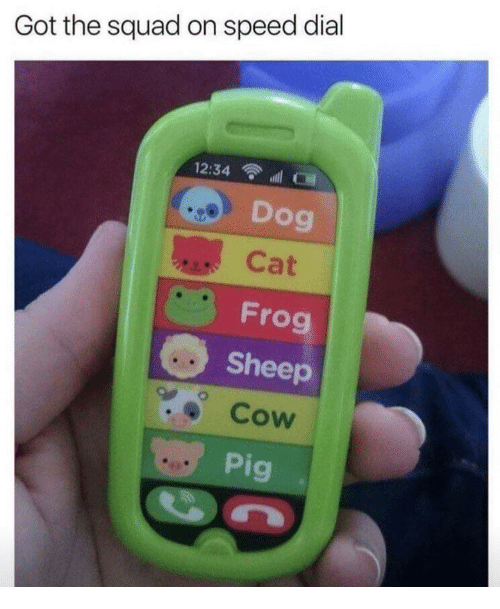 Squad, Got, and Dog: Got the squad on speed dial  12:34 ll  Dog  Cat  Frog  Sheep  Cow  Pig