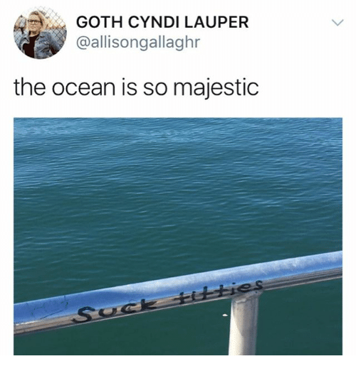 Memes, Ocean, and 🤖: GOTH CYNDI LAUPER  @allisongallaghr  the ocean is so majestic