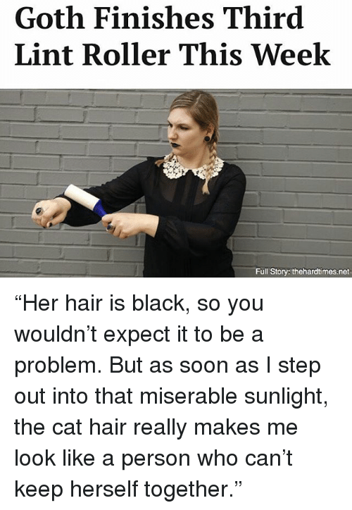 """Memes, Soon..., and Black: Goth Finishes Third  Lint Roller This Week  Full Story: thehardtimes.net """"Her hair is black, so you wouldn't expect it to be a problem. But as soon as I step out into that miserable sunlight, the cat hair really makes me look like a person who can't keep herself together."""""""
