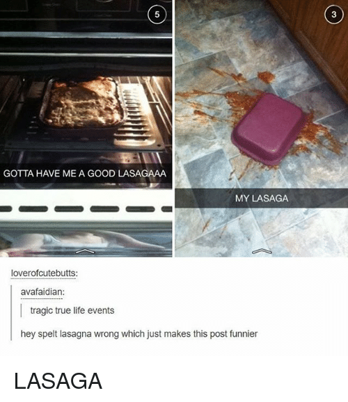 Life, True, and Tumblr: GOTTA HAVE ME A GOOD LASAGAAA  MY LASAGA  loverofcutebutts:  avafaidian:  tragic true life events  hey spelt lasagna wrong which just makes this post funnier LASAGA