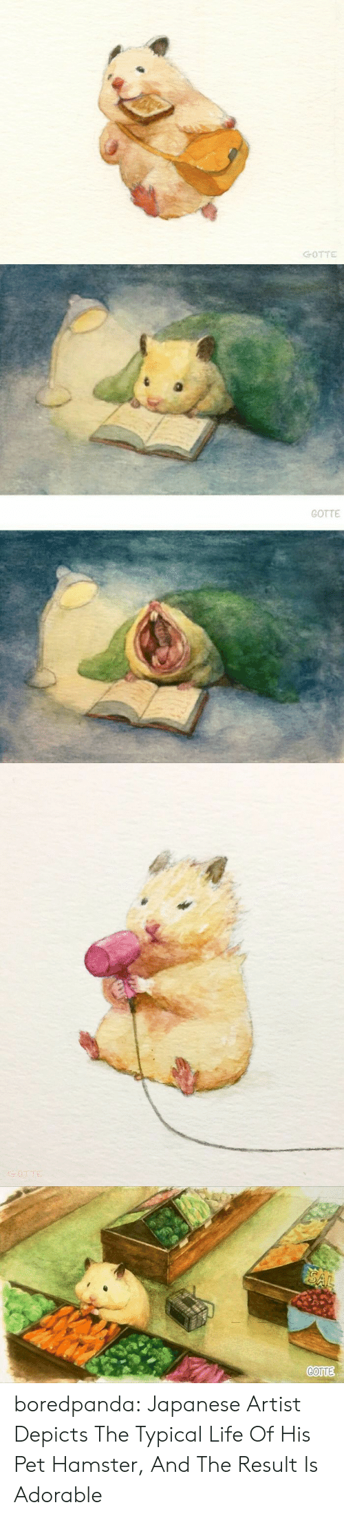 Life, Tumblr, and Blog: GOTTE   GOTTE boredpanda:   Japanese Artist Depicts The Typical Life Of His Pet Hamster, And The Result Is Adorable