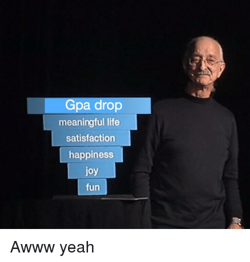 Life, Yeah, and Happiness: Gpa drop  meaningful life  satisfaction  happiness  joy  fun