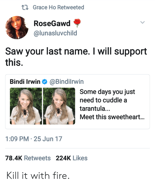 Fire, Saw, and Bindi Irwin: Grace Ho Retweeted  RoseGawd  @lunasluvchild  Saw your last name. I will support  this.  Bindi Irwin Φ @BindiIrwin  Some days you just  need to cuddle a  tarantula...  Meet this sweetheart...  1:09 PM-25 Jun 17  78.4K Retweets 224K Likes Kill it with fire.