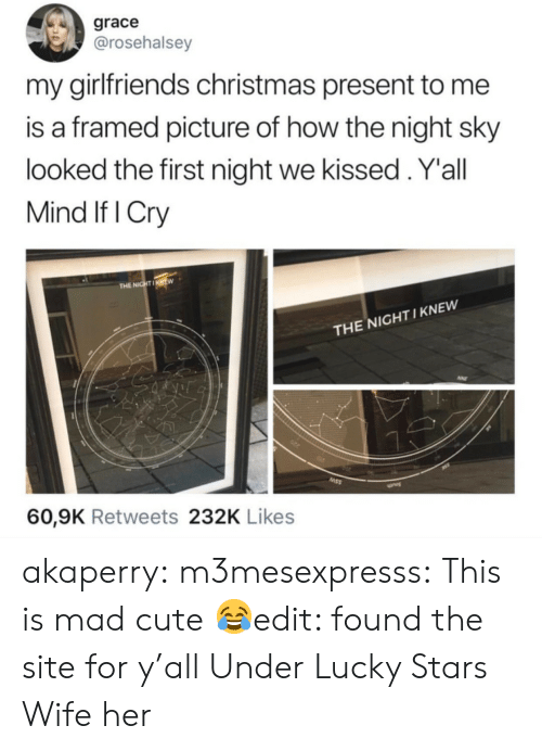 Christmas, Cute, and Tumblr: grace  @rosehalsey  my girlfriends christmas present to me  is a framed picture of how the night sky  looked the first night we kissed.Y'all  Mind If I Cry  THE NIGHTIKNEW  THE NIGHT I KNEW  60,9K Retweets 232K Likes akaperry:  m3mesexpresss:  This is mad cute 😂edit: found the site for y'all Under Lucky Stars  Wife her