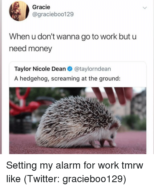 Money, Twitter, and Work: Gracie  @graciebo0129  When u don't wanna go to work but u  need money  Taylor Nicole Dean@taylorndean  A hedgehog, screaming at the ground: Setting my alarm for work tmrw like (Twitter: gracieboo129)