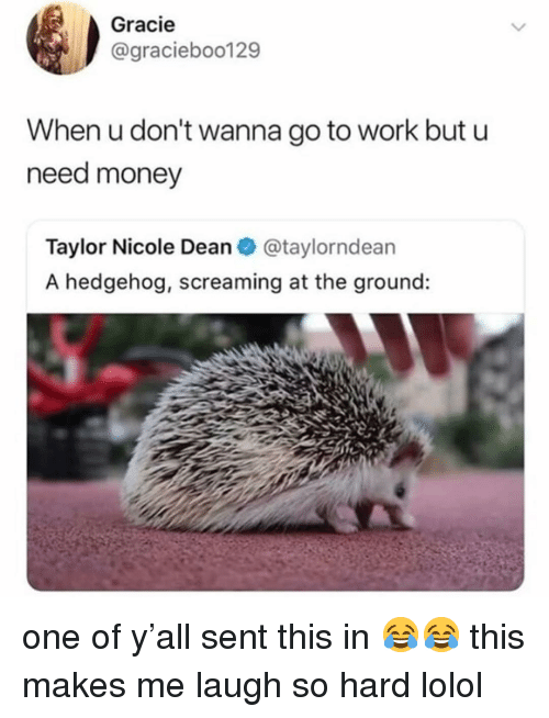 Money, Work, and Hedgehog: Gracie  @gracieboo129  When u don't wanna go to work but u  need money  Taylor Nicole Dean @taylorndean  A hedgehog, screaming at the ground: one of y'all sent this in 😂😂 this makes me laugh so hard lolol