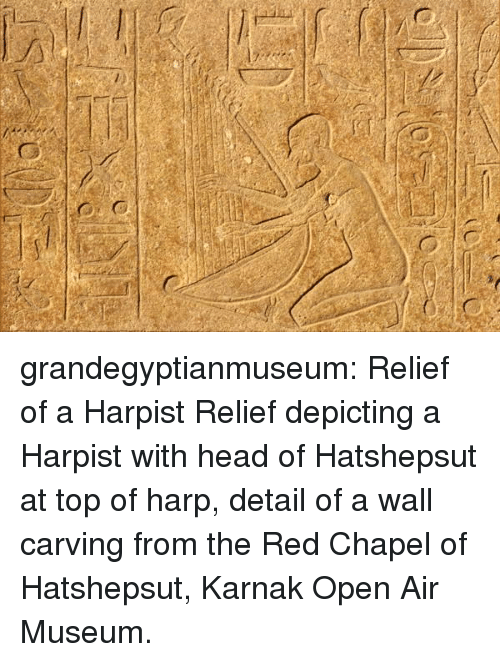 Head, Tumblr, and Blog: grandegyptianmuseum: Relief of a  Harpist    Relief depicting a Harpist with head of Hatshepsut at top of harp, detail of a wall carving from the Red Chapel of Hatshepsut, Karnak Open Air Museum.