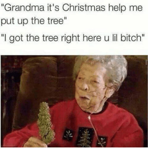 ✅ 25+ Best Memes About Christmas Time in Hollis Queens ...