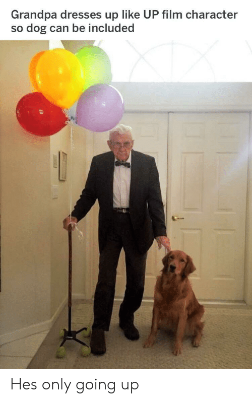 Grandpa, Dresses, and Film: Grandpa dresses up like UP film character  so dog can be included Hes only going up