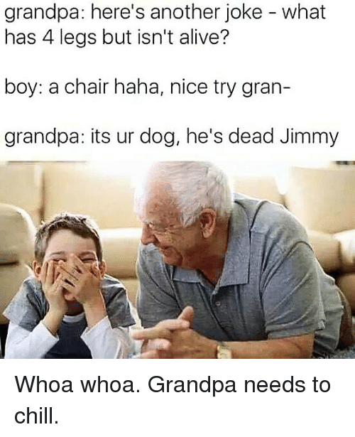 Alive, Chill, and Memes: grandpa: here's another joke - what  has 4 legs but isn't alive?  boy: a chair haha, nice try gran-  grandpa: its ur dog, he's dead Jimmy Whoa whoa. Grandpa needs to chill.
