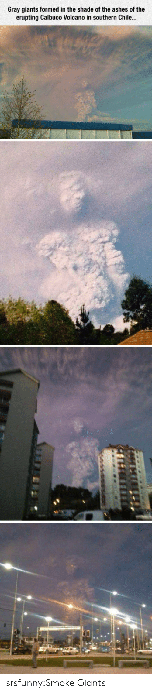 Shade, Tumblr, and Blog: Gray giants formed in the shade of the ashes of the  erupting Calbuco Volcano in southern Chile... srsfunny:Smoke Giants