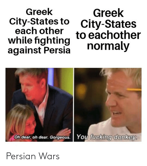 Donkey, Gorgeous, and Persian: Greek  City-States to  each other  while fighting  against Persia  Greek  City-States  to eachother  normaly  Oh dear, oh dear. Gorgeous.  You fucking donkey. Persian Wars