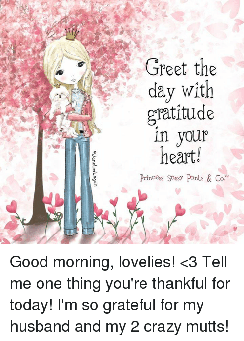Greet the day with gratitude in you heart rincess sassy pants co crazy memes and good morning greet the day with gratitude in you heart m4hsunfo