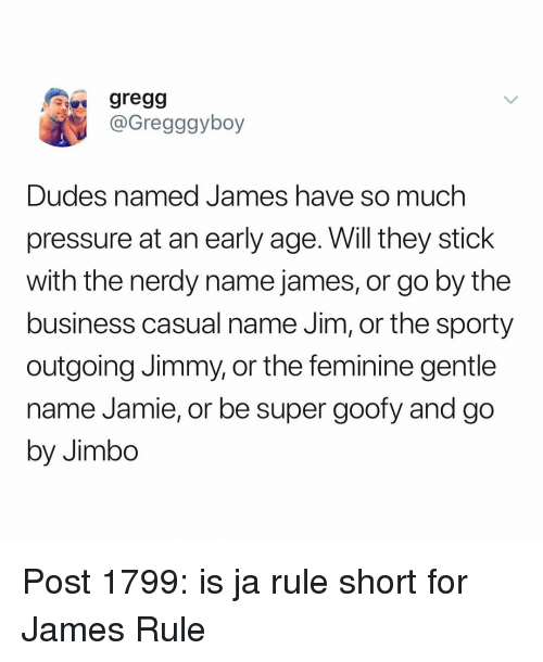 Ja Rule, Memes, and Pressure: gregg  @Gregggyboy  Dudes named James ha  pressure at an early age. Will they stick  with the nerdy name james, or go by the  business casual name Jim, or the sporty  outgoing Jimmy, or the feminine gentle  name Jamie, or be super goofy and go  by Jimbo  ve so much Post 1799: is ja rule short for James Rule