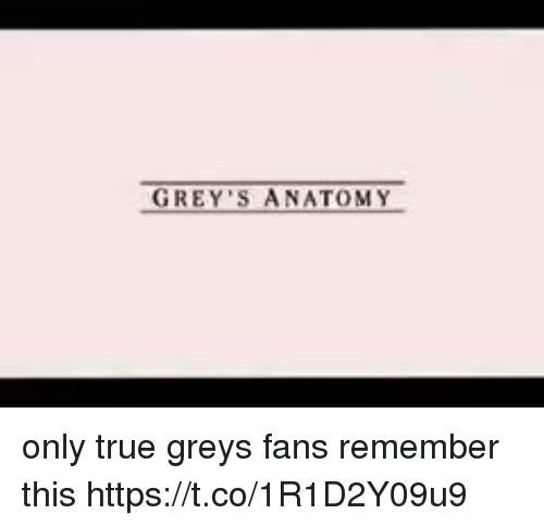 Memes, True, and Grey: GREY ANATOMY only true greys fans remember this https://t.co/1R1D2Y09u9