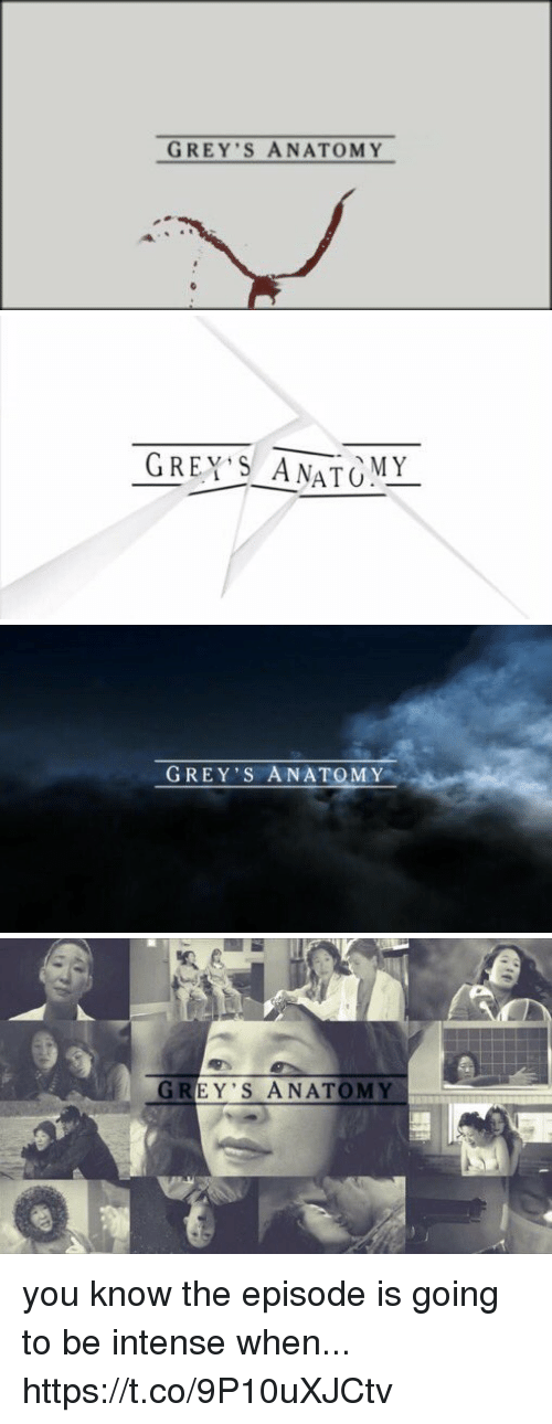 Memes, Grey's Anatomy, and Grey: GREY S ANATOMY   GREY'S AMATO  MY   GREY'S ANATOMY   GREY'S ANATOMY you know the episode is going to be intense when... https://t.co/9P10uXJCtv