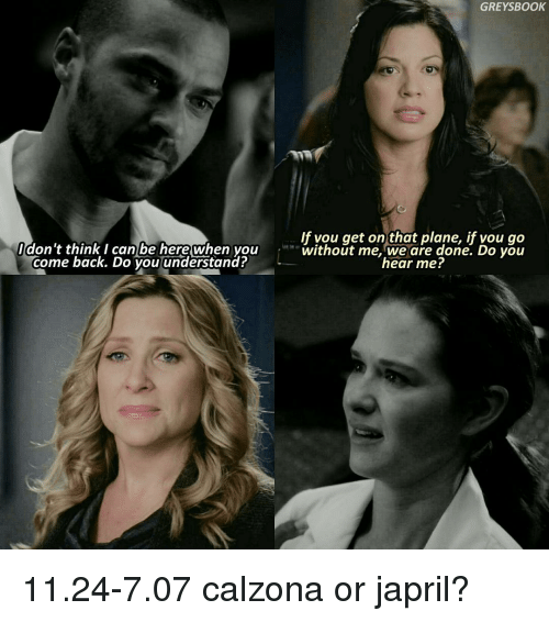 Books, Memes, and Book: GREYS BOOK  If vou get on that plane, don't think I can be here when you  without me, we are done. Do you  come back. Do you understand?  hear me? 11.24-7.07 calzona or japril?