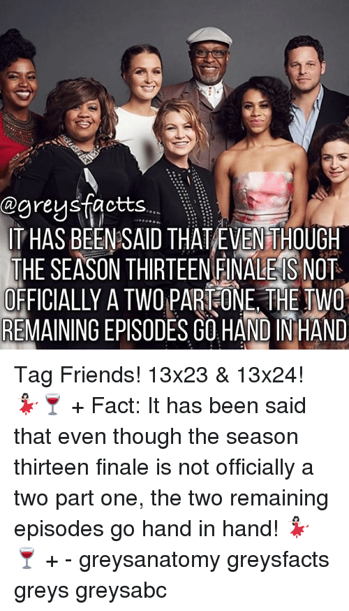 Friends, Memes, and Been: @greys factts  ITHAS BEEN SAID THAT EVENTHOUGH  THE SEASON THIRTEEN FINALE S NOT  OFFICIALLY A TWO PART ONE THE TWO  REMAINING EPISODES GOHAND INHAND Tag Friends! 13x23 & 13x24! 💃🏻🍷 + Fact: It has been said that even though the season thirteen finale is not officially a two part one, the two remaining episodes go hand in hand! 💃🏻🍷 + - greysanatomy greysfacts greys greysabc