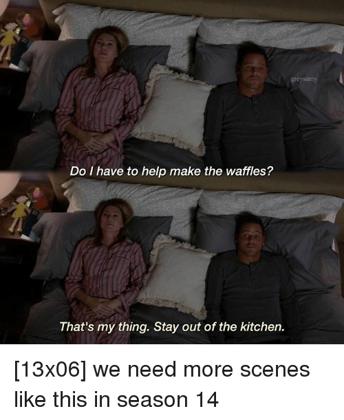 Memes, Help, and 🤖: greysamy  Do I have to help make the waffles?  That's my thing. Stay out of the kitchen. [13x06] we need more scenes like this in season 14