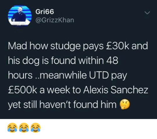 Memes, Mad, and Alexis Sanchez: Gri66  @GrizzKhan  Mad how studge pays £30k and  his dog is found within 48  hours..meanwhile UTD pay  £500k a week to Alexis Sanchez  yet still haven't found him 😂😂😂