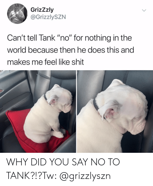 """Shit, World, and Tank: GrizZzly  @GrizzlySZN  Can't tell Tank """"no"""" for nothing in the  world because then he does this and  makes me feel like shit WHY DID YOU SAY NO TO TANK?!?Tw: @grizzlyszn"""