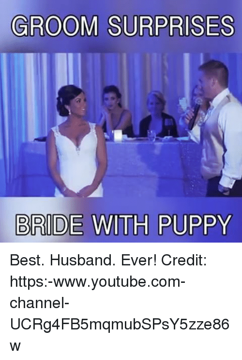 groom surprises bride with puppy best husband ever credit https www youtube com channel ucrg4fb5mqmubspsy5zze86w 17195716 groom surprises bride with puppy best husband ever! credit s