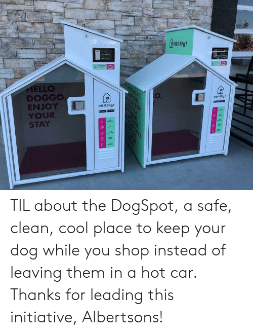 Hello, Holes, and Cool: GroSROT  AVAILABLE  HELLO  DOGGO  ENJOY  YOUR  STAY  DOGSPO  N HOLES  R IT ASA  DOGSPOT  SALOTL  ATHIOOM  il TIL about the DogSpot, a safe, clean, cool place to keep your dog while you shop instead of leaving them in a hot car. Thanks for leading this initiative, Albertsons!