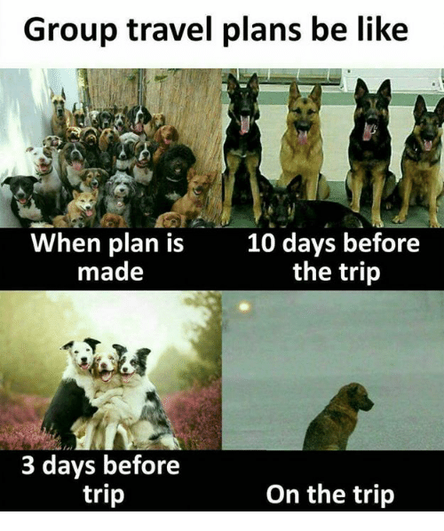 f3387e644a Travel Meme images Group travel plans be like when plan is made 10 days  before the