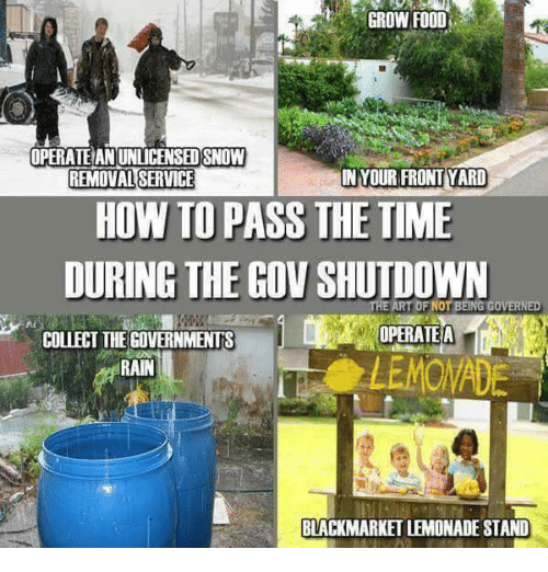 Food, Memes, and How To: GROW FOOD  OPERATE AN UNLICENSED SNOW  REMOVAL SERVICE  IN YOUR FRONT YARD  HOW TO PASS THE TIME  DURING THE GOV SHUTDOWN  ART OF NOT BEING GOVERNED  OPERATEA  COLLECT THEGOVERNMENTS  RAIN  BLACKMARKET LEMONADE STAND