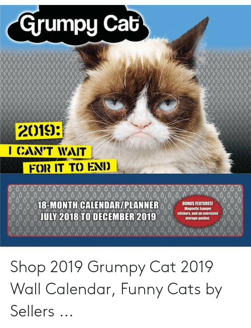 Grumpy Cat 2019 I Cant Wait For It To End 18 Month