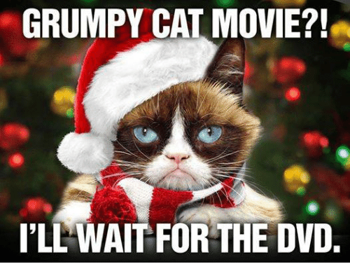 Grumpy cat movie ill wait for the dvd meme on me memes grumpy cat and grumpy cat movie ill wait for thecheapjerseys Choice Image