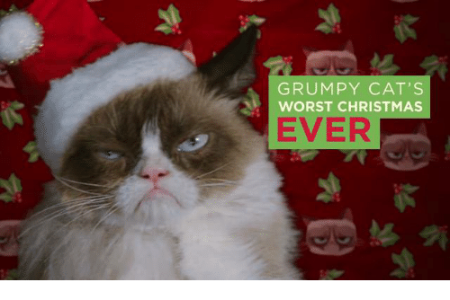 Grumpy Cat Christmas Memes.Grumpy Cat S Worst Christmas Ever Cats Meme On Me Me