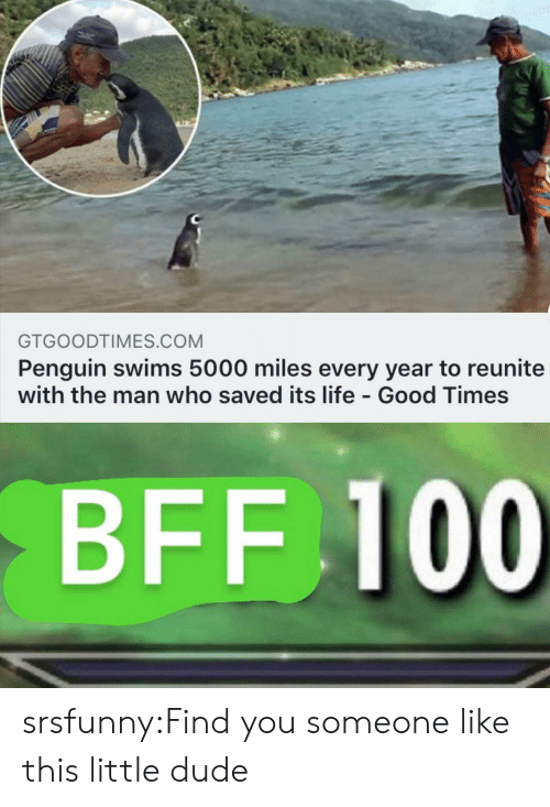 Dude, Life, and Tumblr: GTGOODTIMES.COM  Penguin swims 5000 miles every year to reunite  with the man who saved its life - Good Times  BFF 100 srsfunny:Find you someone like this little dude