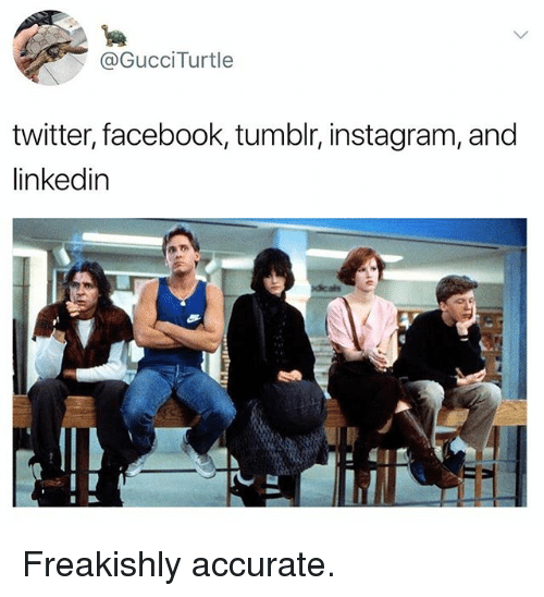 Facebook, Funny, and Instagram: @GucciTurtle  twitter, facebook, tumblr, instagram, and  linkedin Freakishly accurate.