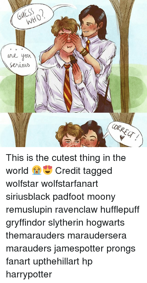37099bb7c Gryffindor, Memes, and Slytherin: GUESS serious CORRE This is the cutest  thing in