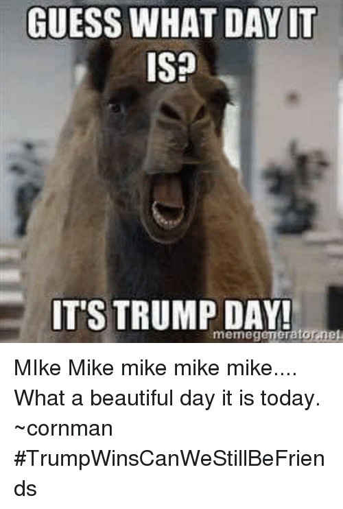 Guess What I Know: 25+ Best Mike Mike Mike Memes
