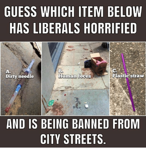 guess-which-item-below-has-liberals-horr