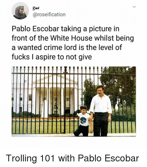 Crime, Memes, and Pablo Escobar: gui  @roseification  Pablo Escobar taking a picture in  front of the White House whilst being  a wanted crime lord is the level of  fucks I aspire to not give Trolling 101 with Pablo Escobar