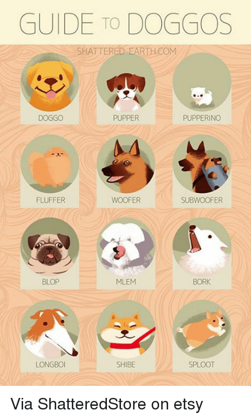 Memes, Etsy, and Blop: GUIDE TO DOGGOS  SHATTERED-EARTHCOM  DOGGO  PUPPER  PUPPERINGO  FLUFFER  WOOFER  SUBWOOFER  BLOP  MLEM  BORK  LONGBO  SHIBE  SPLOOT Via ShatteredStore on etsy