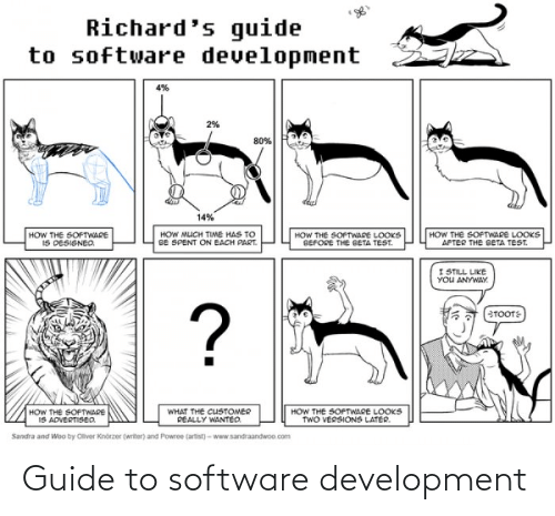 Software, Guide, and Development: Guide to software development