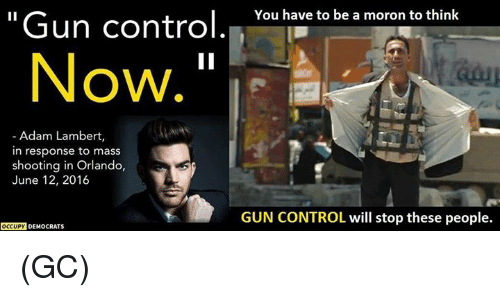 Memes, Control, and Orlando: Gun control  You have to be a moron to think  Now  Adam Lambert,  in response to mass  shooting in Orlando,  June 12, 2016  GUN CONTROL will stop these people.  OCCUPY  DEMOCRATS (GC)