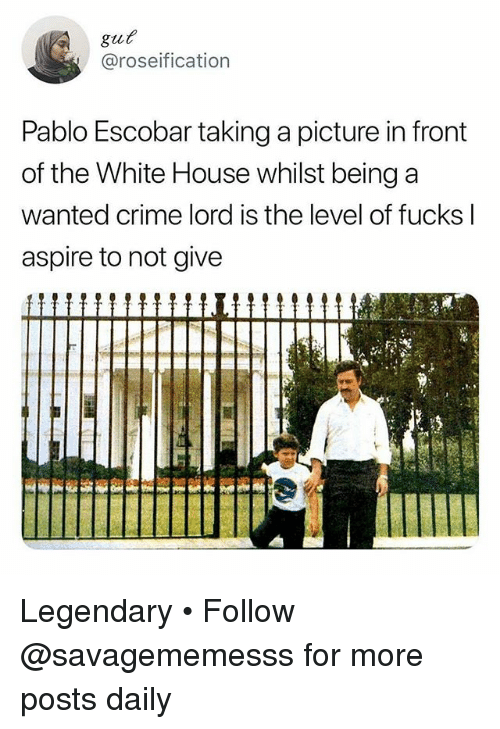 Crime, Memes, and Pablo Escobar: gut  @roseification  Pablo Escobar taking a picture in front  of the White House whilst being a  Wanted crime lord is the level of fucksl  aspire to not give Legendary • Follow @savagememesss for more posts daily