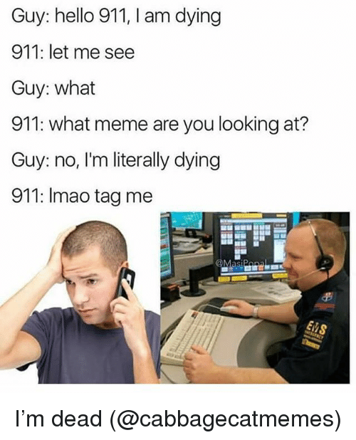 Funny, Hello, and Meme: Guy: hello 911, I am dying  911: let me see  Guy: what  911: what meme are you looking at?  Guy: no, I'm literally dying  911: Imao tag me I'm dead (@cabbagecatmemes)