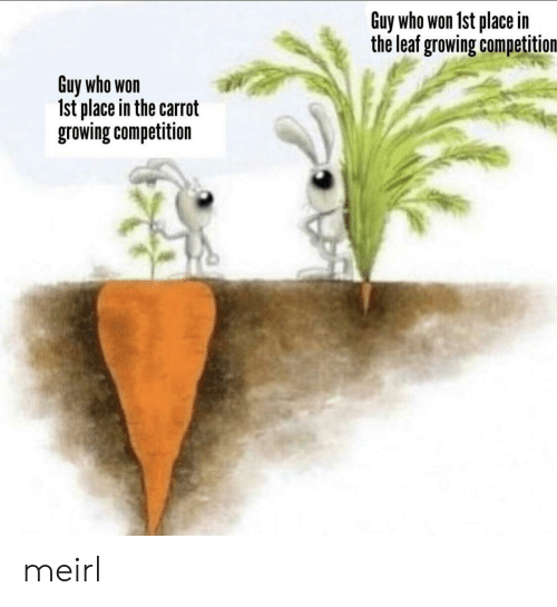 MeIRL, Leaf, and Who: Guy who won 1st place in  the leaf growing competition  Guy who won  Ist place in the carrot  growing competition meirl