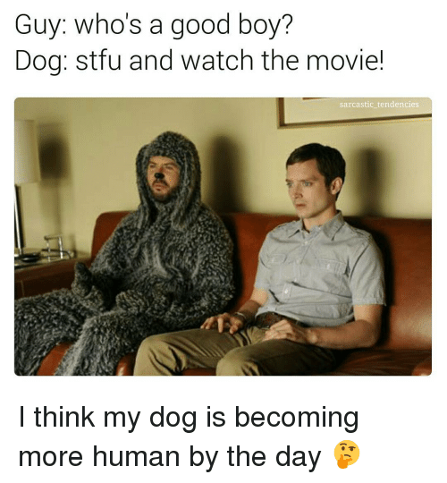 Guy Who's a Good Boy? Dog Stfu and Watch the Movie