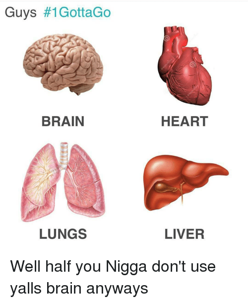 Memes, 🤖, and Liver: Guys  #1GottaGo  BRAIN  LUNGS  HEART  LIVER Well half you Nigga don't use yalls brain anyways