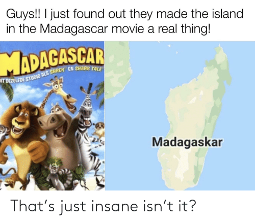 Shrek, Shark Tale, and Shark: Guys!! I just found out they made the island  in the Madagascar movie a real thing!  IT DEZELFDE STUDIO ALS SHREK EN SHARK TALE  Madagaskar That's just insane isn't it?