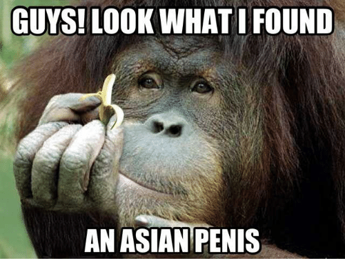 The asian penis
