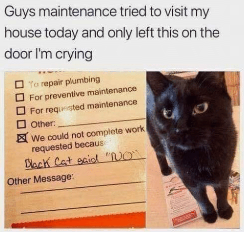 Crying, Memes, and My House: Guys maintenance tried to visit my  house today and only left this on the  door I'm crying  To repair plumbing  For preventive maintenance  For requested maintenance  Other:  We could not complete work  requested becaus  Other Message