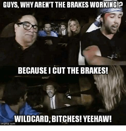 wildcard bitches